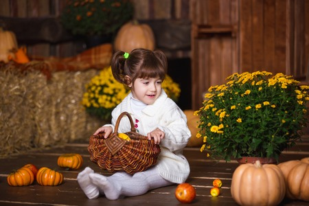 apple basket: Portrait of adorable smiling girl posing with apple basket in fall wooden interior