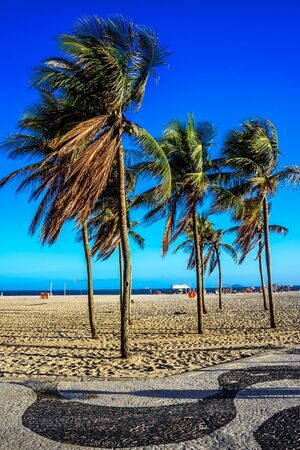 Palm trees at windy and sunny day at Copacabana beach and promenade with its black and white Portuguese pavement design, Rio de Janeiro, Brazil Stock Photo
