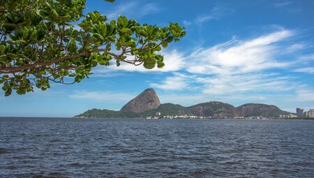 View of green tree and Guanabara Bay at the sunny day with Sugarloaf Mountain in the background, Rio De Janeiro, Brazil