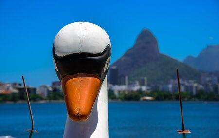 Head of a white Swan Pedal Boat with blurry Rodrigo de Freitas Lagoon and Dois Irmaos Mountain on the background, Lagoa district, Rio de Janeiro, Brazil