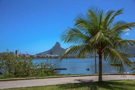 Famous bicycle and running track, green palm tree, Rodrigo de Freitas Lagoon and Dois Irmaos Mountain, the most emblematic point of the neighborhood Lagoa, Rio de Janeiro, Brazil