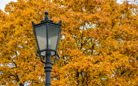 Carved metal dirty street light on the background of blurry autumn golden maple trees in Kolomenskoye park at warm November day, Moscow city, Russia