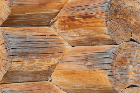 Closeup of joint of cracked logs and transect of round logs with coils and cracks at the corner of old wooden building at sunny day Reklamní fotografie