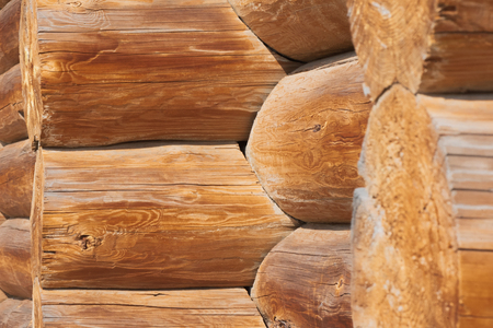 Closeup of joint of cracked logs and transect of round logs with coils and cracks at the corner of old wooden building at sunny day Фото со стока