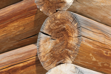 Closeup of joint of cracked logs and transect of round logs with coils and cracks of old wooden building at sunny day Фото со стока