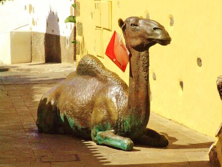 Sculpture of dromedary in Aguimes