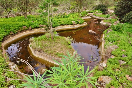 Pond for bird watching, Caldera de Bandama. Grand Canary