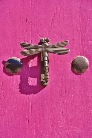Dragonfly shaped knocker on a pink door Foto de archivo