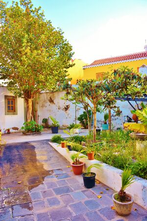 Garden of the Church of San Juan Bautista in Telde, Grand Canary. May 2018