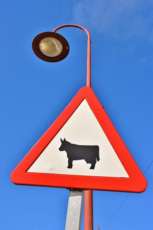 Passage of domestic animals, road sign