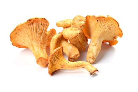 palatable: mushrooms chanterelle ; Objects on white background