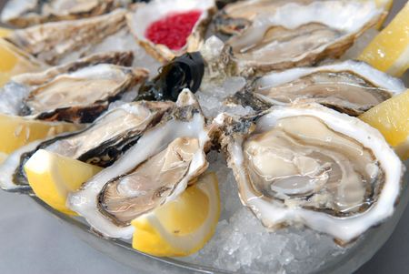 Oysters in ice with a lemon and sauce photo