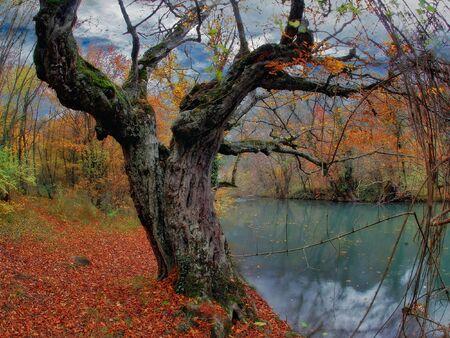 cours d eau: Watercourse en Tchenoretchenska�a canyon de Crim�e en automne