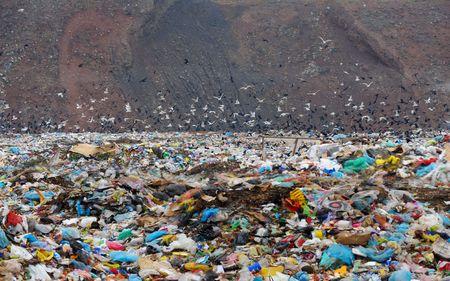 Household dust on a city dump photo