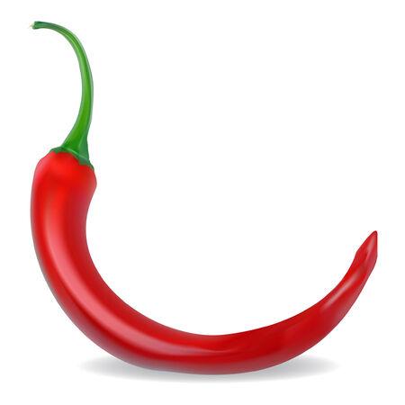pimenton: pimiento caliente rojo sobre un fondo blanco