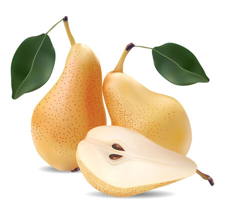 pears and leaves on a white background Vector