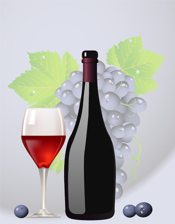 Bottle and glass with red wine leaves of grapes and berries Vector