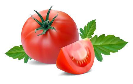 segmento: tomate con segmento sobre un fondo blanco  Vectores