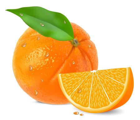 orange cut:  Orange con segmentos en un vector de fondo blanco Vectores