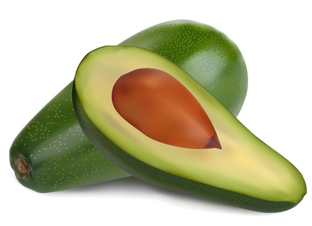 Ripe avocado isolated on white background vector Illustration