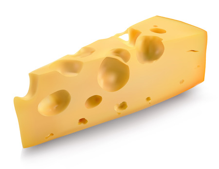 cheese with the holes on a white background  Vector