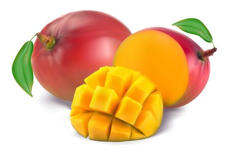 Mango with section on a white background Illustration