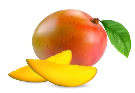 mango fruit: fresh mango fruit with cut and green leafs vector