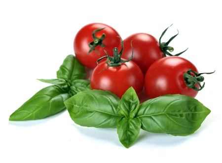 Leaves of basil and tomatoes on a white background Stock Photo - 10193145