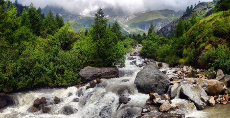 stream: mountain stream in the Alps in the park Monte Rosa