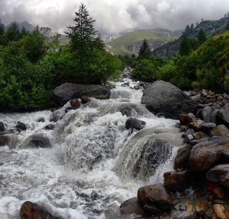 rosa: mountain stream in the Alps in the park Monte Rosa