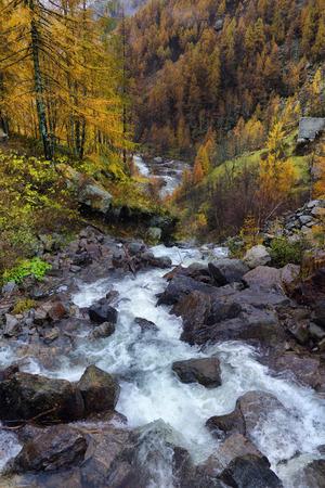 european alps: autumn landscape in the Alps
