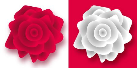 A set of two variations of a realistic rose flower, in red and white. Gradient. Isolated.