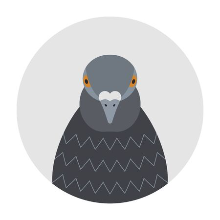Cartoon funny pigeon head, front view. Flat style, icon.