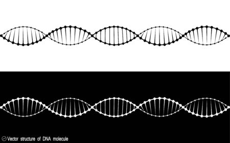A set of two variants of the DNA molecule. black and white variety. Simple drawing, icon. For your design. Isolated. 10 eps Stock Illustratie