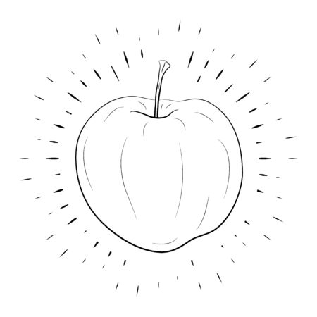 Apple hand drawn, black outline on white background, in center of line rays. For the design of posters, banners, logos. 10 eps Ilustracja