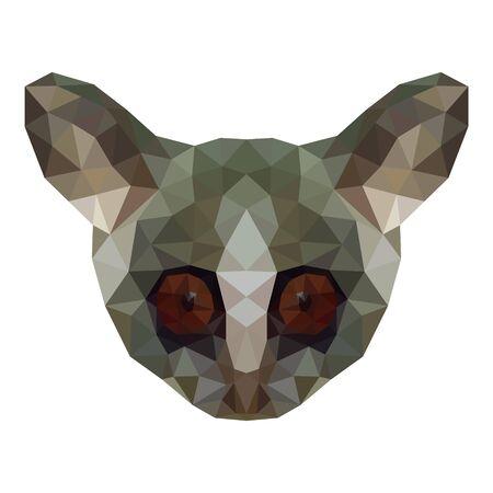 Polygon head senegal bushbaby, Galago senegalensis. Vector image. On a white background. Illustration