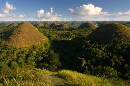 hill distant: Mountains Chocolate Hills.