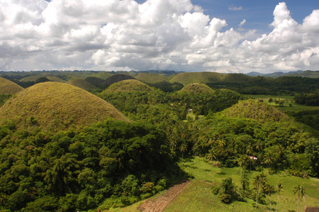 hill distant: Mountains Chocolate Hills.  Stock Photo