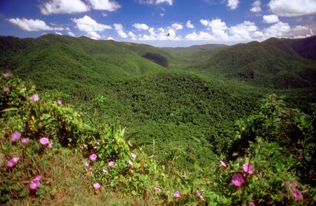 Reservoir, Las Terrazas, Sierra del Rosario Nature and Biosphere Reserve, Cordillera de Guaniguanico, Pinar del Rio, Cuba.