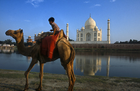 mughal architecture: Agra, Uttar Pradesh, India. Camel and Indian boy beside the river at the Taj Mahal in Agra. An Indian boy with his camel rides on the banks of the Yamuna River with the Taj Mahal in the background. Visiting Indias most famous destination, the Taj Mahal i Editorial