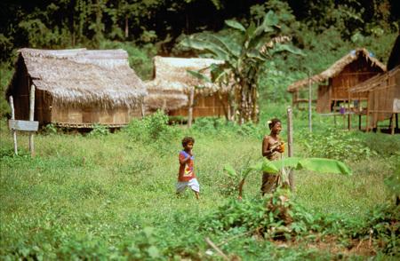 jah: Orang Asli tribe in Taman Negara National Park in central Malaysia. Typical hutsin the village. Editorial