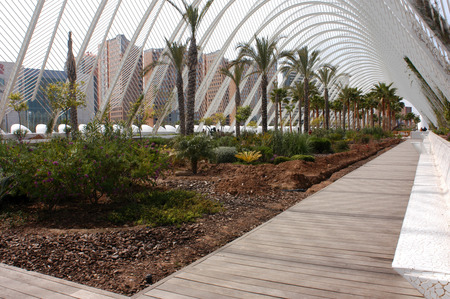 LUmbracle - a landscaped walk in the City of Arts and Sciences in Valencia, Spain. Editorial