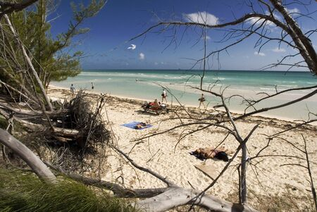 BAHAMAS, Grand Bahama Island, Eastern Side: Lucayan National Park, Gold Rock Beach