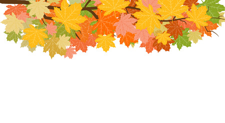 Abstract Vector Illustration Background with Falling Autumn Leaves. 写真素材