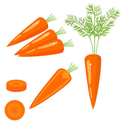 Bright vector set of colorful half, slice and whole of carrot. Fresh cartoon vegetable isolated on white background. Illustration used for magazine, book, poster, card, menu cover, web pages.