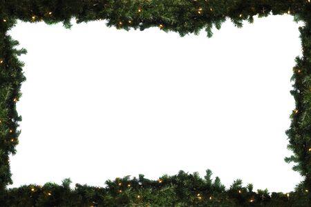 obraz zielonych gałęzi świerkowych na białym tle Zdjęcie Seryjne