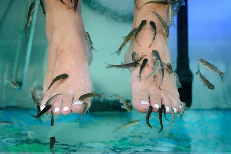 image of massage of the feet in an aquarium with fish close-up Stockfoto