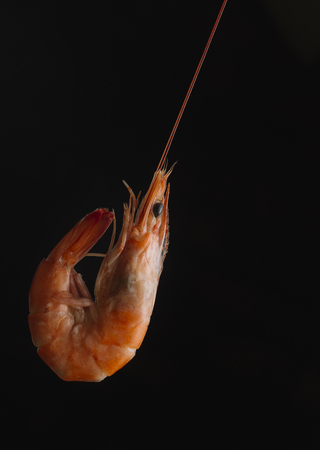 creole: Shrimps on black background. Delicious seafood appetizer served boiled or grilled with spices. Close up. Top view.