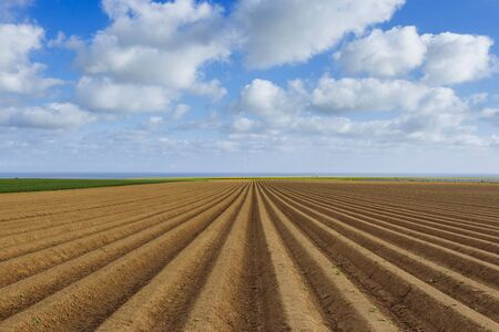 arando: Plowed agricultural fields prepared for planting crops in Normandy, France. Countryside landscape with cloudy sky, farmlands in spring. Environment friendly farming and industrial agriculture concept.