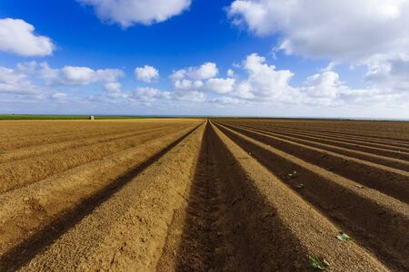 Plowed agricultural fields prepared for planting crops in Normandy, France. Countryside landscape, farmlands in spring. Environment friendly farming and industrial agriculture concept Stock Photo